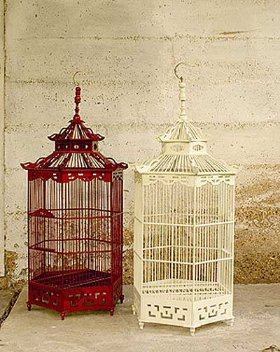 041608-BIRDCAGE2
